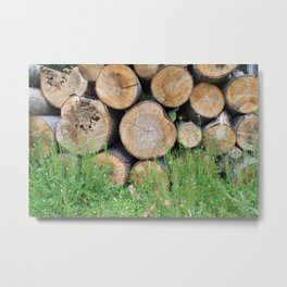 A background of wood Metal Print