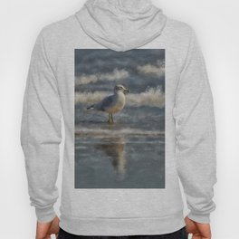 Seagull By The Seashore Hoody