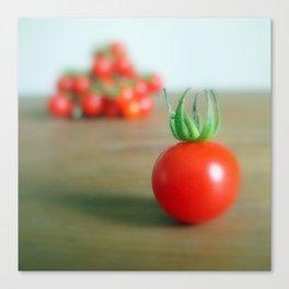 Summer Garden Tomatoes Canvas Print