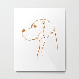 English Pointer (White and Orange) Metal Print