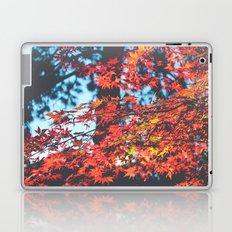 Lake Tahoe Leaves Laptop & iPad Skin