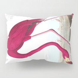 American Flamingo John James Audubon Vintage Scientific Hand Drawn Illustration Birds Pillow Sham