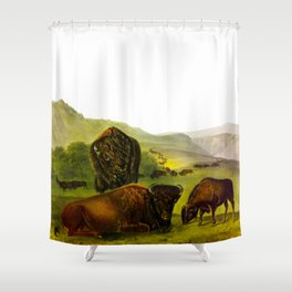 American Bison (female, and young) Vintage Animal Illustration Shower Curtain
