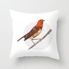 Messenger 006 Throw Pillow