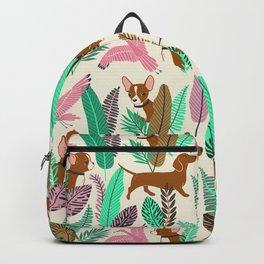 Chihuahua Backpack