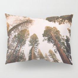 Sequoia Sunset Pillow Sham