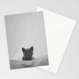 Kitten under the sheets Stationery Cards