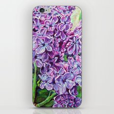 Lilacs  iPhone & iPod Skin