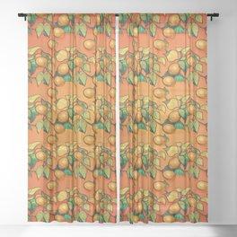 """Coral Sunset over Lemon tree Pattern"" Sheer Curtain"