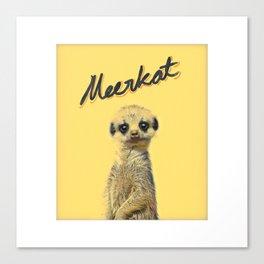Meerkat   Yellowcard NO.1 Canvas Print