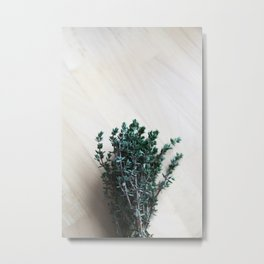 Bundle of thyme Metal Print