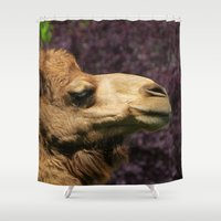camel Shower Curtains featuring MM - Camel by Pirmin Nohr