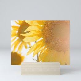 Sunflowers and Sunshine Mini Art Print