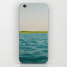 Force of Nature iPhone & iPod Skin