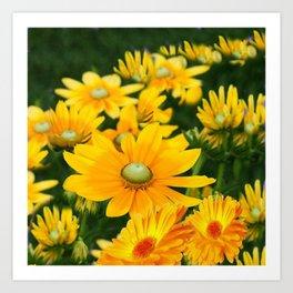 GOLDEN YELLOW  FLOWERS  GARDEN Art Print