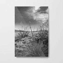 Colorado Rocks #4 Metal Print