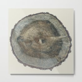 Stump Rings Metal Print