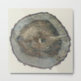 Stump Rings Metal Print