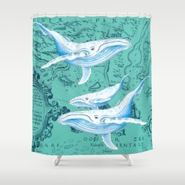 Whale Family Teal Shower Curtain