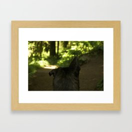 Lop Eared Framed Art Print
