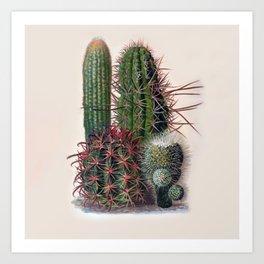 Vintage Cactus Print Art Print