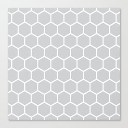 White and gray honeycomb pattern Canvas Print