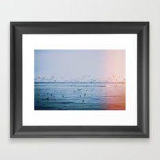 Ocean Birds Framed Art Print