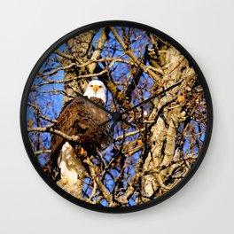 Bald Eagle (9279) Wall Clock