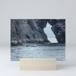 Two Humpback Whales in Resurrection Bay Mini Art Print