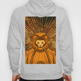 SpaceCats (orange) Hoody