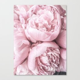 Lush Peony Flower Canvas Print