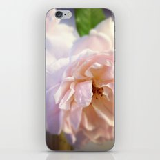 Luna Rosas iPhone & iPod Skin
