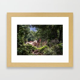 Hidden Horses Framed Art Print