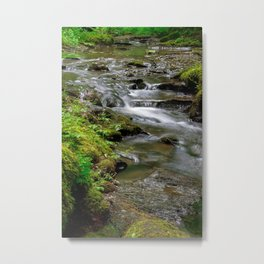 small stream with rapids Metal Print