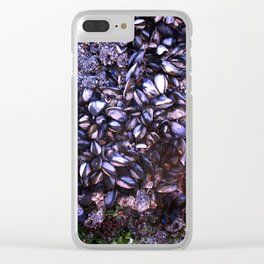 Sea Shells Clear iPhone Case