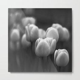 Black and white tulips Metal Print