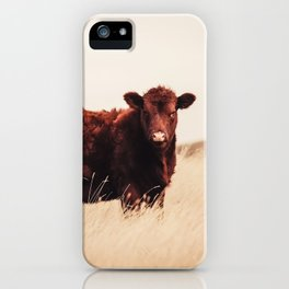 Red Angus Cow Art iPhone Case