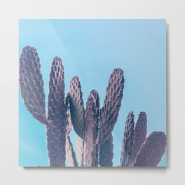 Cactus Photography Print {3 of 4} | Cool Blue Succulent Plant Nature Western Desert Design Decor Metal Print
