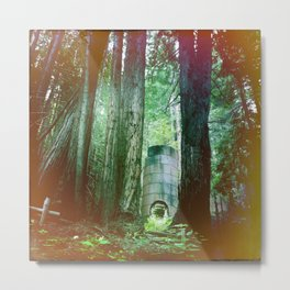 For the Love of Trees. Big Sur, CA Metal Print