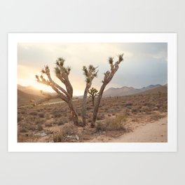 A Lovely Sunset Art Print
