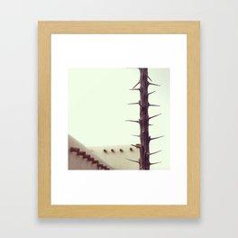southwest Framed Art Print