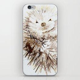 Hedgehog Cuddles iPhone Skin