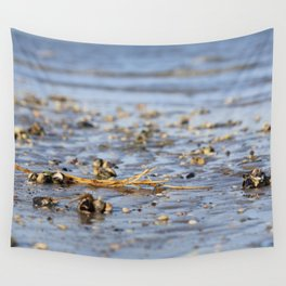 Shells in the sand 3 Wall Tapestry