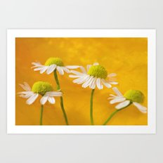 golden margaritas Art Print