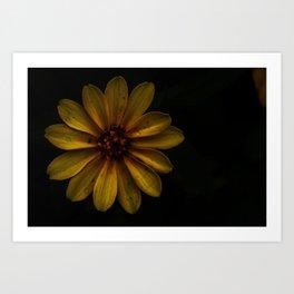 Rustic Sunflower Art Print