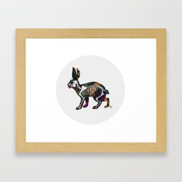 Anatomy of a Bunny Framed Art Print