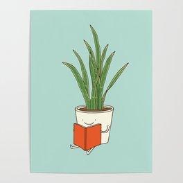 indoor plants Poster