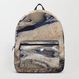 Rock Pools Backpack