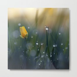 When the Flowers Sleep. Metal Print