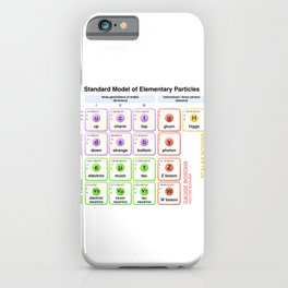 Physics - Standard Model of Elementary Particles - Physicist iPhone Case